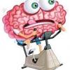 Actividades para ejercitar la memoria