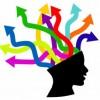 Plan De Estudios 2011 Mapa Conceptual Guía De Estudio