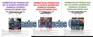 FotmatoProductosCTE-300x121