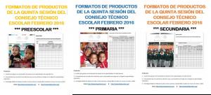 FormatosQuintaSesionCTE-300x136