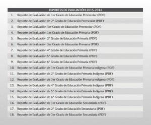 ReporteDeEvaluacionME-300x248